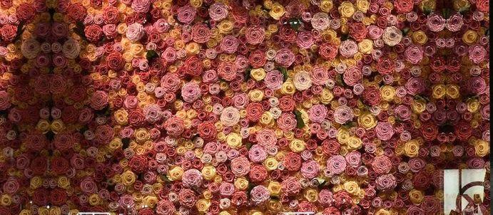 KIARA FLOWERS @NY 5th ave